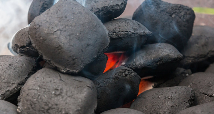 The Griller's Guide to Charcoal Briquettes
