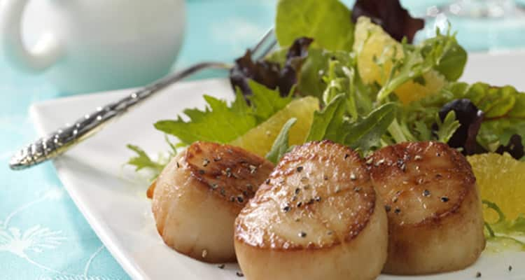Grilled Sea Scallop Salad Recipe